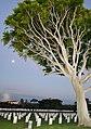 Point Loma, San Diego, CA, USA - panoramio (31).jpg