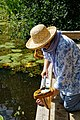 Pond dipping at Woods Mill, Sussex Wildlife Trust, England 2.jpg
