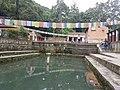 Pond in godawari 20170706 125003.jpg