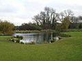 Pond on Close House Golf Course - geograph.org.uk - 1038449.jpg