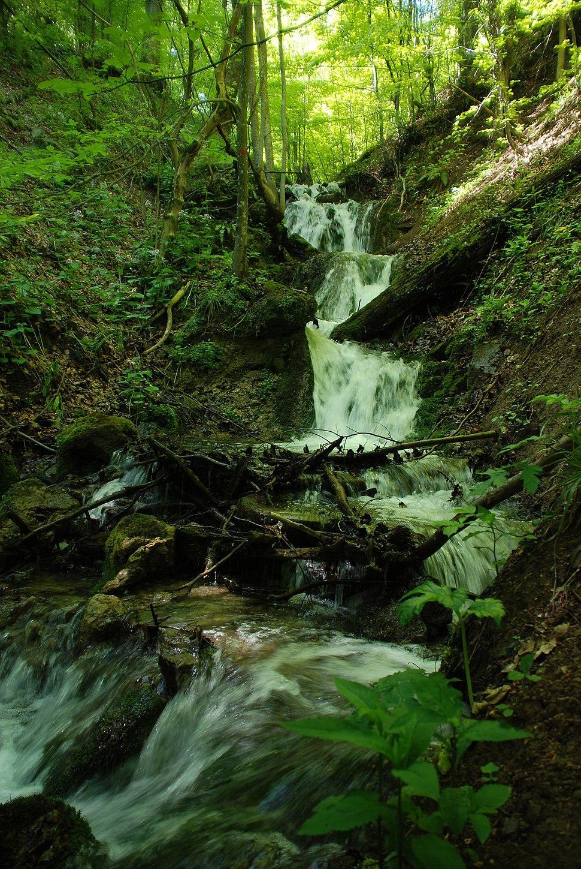 Povlen - zapadna Srbija - Povlenska reka - Vodopad u gornjem toku 1
