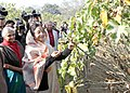 """Pratibha Devisingh Patil inaugurated the """"Nature Trail"""" at the President's Estate on December 13, 2008. This is an effort to bring the people closer to Rashtrapati Bhavan and to encourage environmental awareness.jpg"""