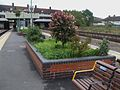Preston Road stn flower bed.JPG