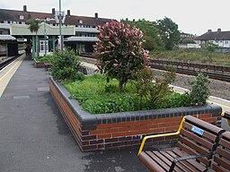 Preston Road stn flower bed