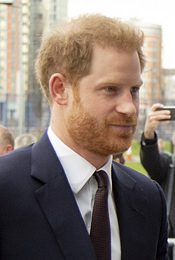 Prince Harry, Duke of Sussex 2020 cropped 02.jpg