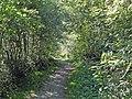 Promenade le long de la Dranse, en direction de Montriond - panoramio.jpg