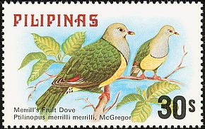 Description de l'image Ptilinopus merrilli 1979 stamp of the Philippines.jpg.