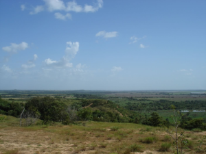 Puerto López, Meta - The Llanos plains in the outskirts of Puerto Lopez