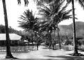 Queensland State Archives 1356 Palm Island looking from the beach c 1935.png