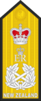 RNZN-SHOULDER-OF10.png