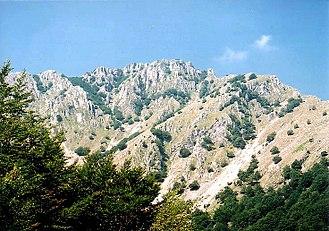 Mehedinți Mountains - Vârful lui Stan