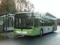 RVK Linienbus Vogelsang.JPG
