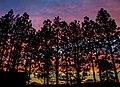 Rainbow sunset (15444228822).jpg