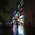 Rainy Evening near Tongji University (43745533440).jpg