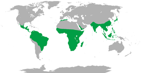 Range of the nonhuman primates (green)