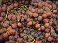 Red globe grapes.jpg