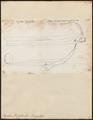 Regalecus russellii - 1700-1880 - Print - Iconographia Zoologica - Special Collections University of Amsterdam - UBA01 IZ13700025.tif