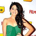 Regina Cassandra at 60th South Filmfare Awards 2013 (cropped).jpg