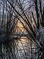 Reiche Ebrach Erlach Winter-20200101-RM-155849.jpg