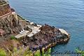 Reid's Palace Hotel, Madeira (15968251093).jpg