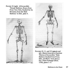 Geneviève Thiroux d'Arconville - Picture of skeletons in Treatise on Osteology