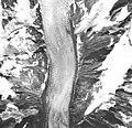Rendu Glacier, tidewater glacier and hanging glaciers, September 17, 1966 (GLACIERS 5818).jpg