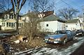 Residential alley with cars (20687942506).jpg