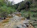 Riera de Merlès pel refugi de Piugcercós, aigües avall.JPG