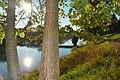 Rijeka Sana u susret suncu.jpg