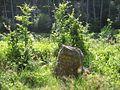 Ritterstein 40 R Granitzenhütte.JPG