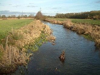 River Allen, Dorset - The river close to Furzehill