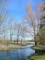 River Bourne at Newton Tony - geograph.org.uk - 1736072.jpg