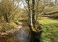 River Dart - geograph.org.uk - 2318977.jpg