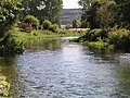 River Wylye, Great Wishford - geograph.org.uk - 283032.jpg