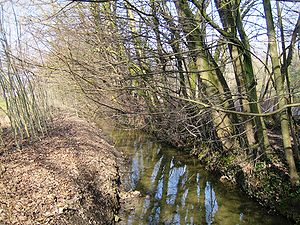 Woluwe-Saint-Pierre - Woluwe river