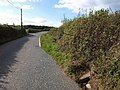 Road approaching Hollycombe Cross - geograph.org.uk - 1553124.jpg