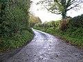 Road at Roughan - geograph.org.uk - 1017994.jpg