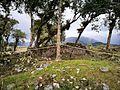 Ruïnes de Kuelap cobertes de vegetació03.jpg