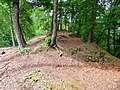 Ruine Greifenfels Plateau.jpg