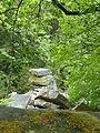 Ruine Hirschstein xy 7.JPG