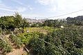 Rutes Històriques a Horta-Guinardó-can travi nou 04.jpg