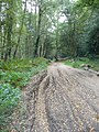 Rutted Byway to Hogden Cottage - geograph.org.uk - 560518.jpg