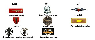 South African Special Forces - SANDF Additional Special Forces Proficiencies