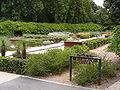 SAwater Mediterranean Garden - Botanic Garden.jpg