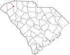 Greenville Zoo - Żyrafy - Karolina Południowa (U