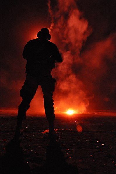 https://upload.wikimedia.org/wikipedia/commons/thumb/0/0e/SEAL_training-091203-N-7303M-099.jpg/398px-SEAL_training-091203-N-7303M-099.jpg