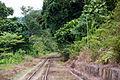 SabahStateRailways RailwayOperationInPadasRiverValley-11.jpg