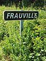Saint-Aubin-Château-Neuf-FR-89-Frauville-a2.jpg