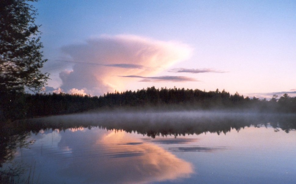 Salamajärvi national park 2