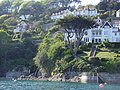 Salcombe, Devon-7308574080.jpg